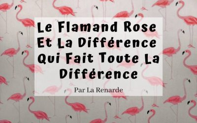 Le Flamand Rose Et La Différence Qui Fait Toute La Différence